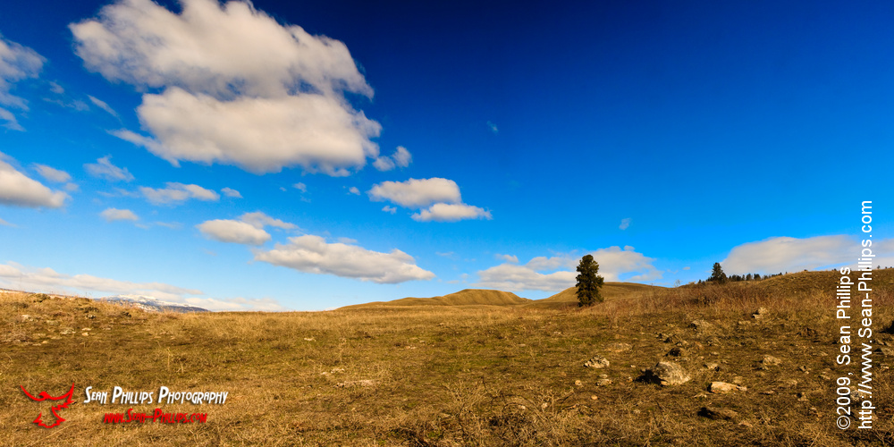 Panorama of a barren landscape