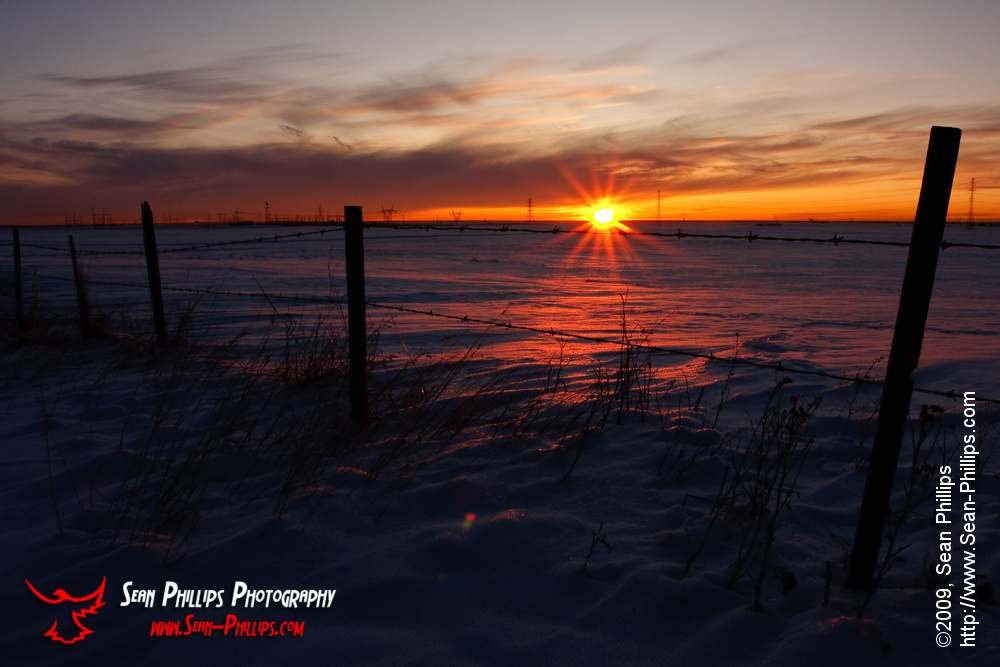 Sunrise Starburst