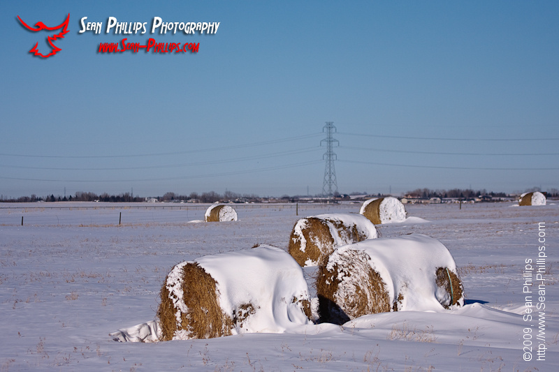 When even the bales are cold...