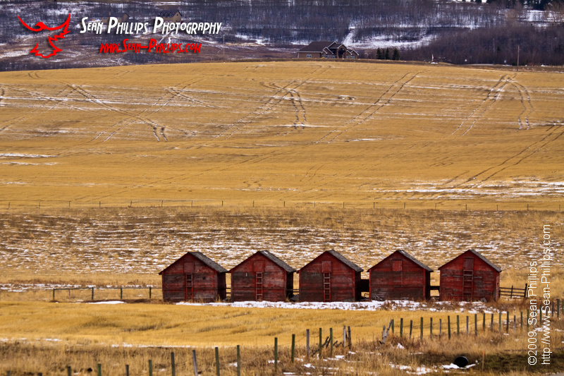 Five Red Barns