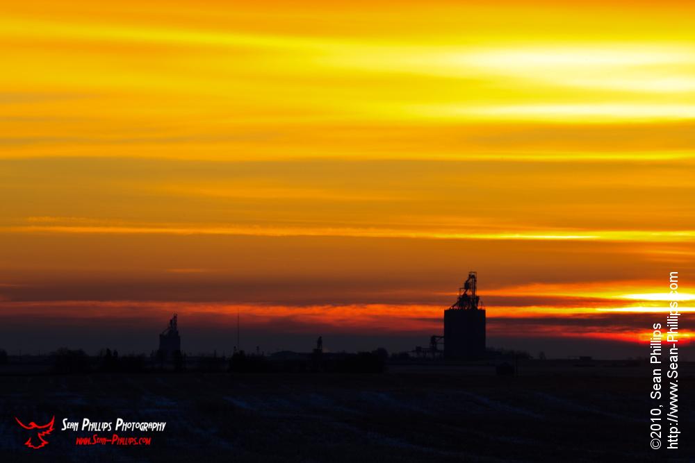 Golden Prairie Landscape at Sunrise